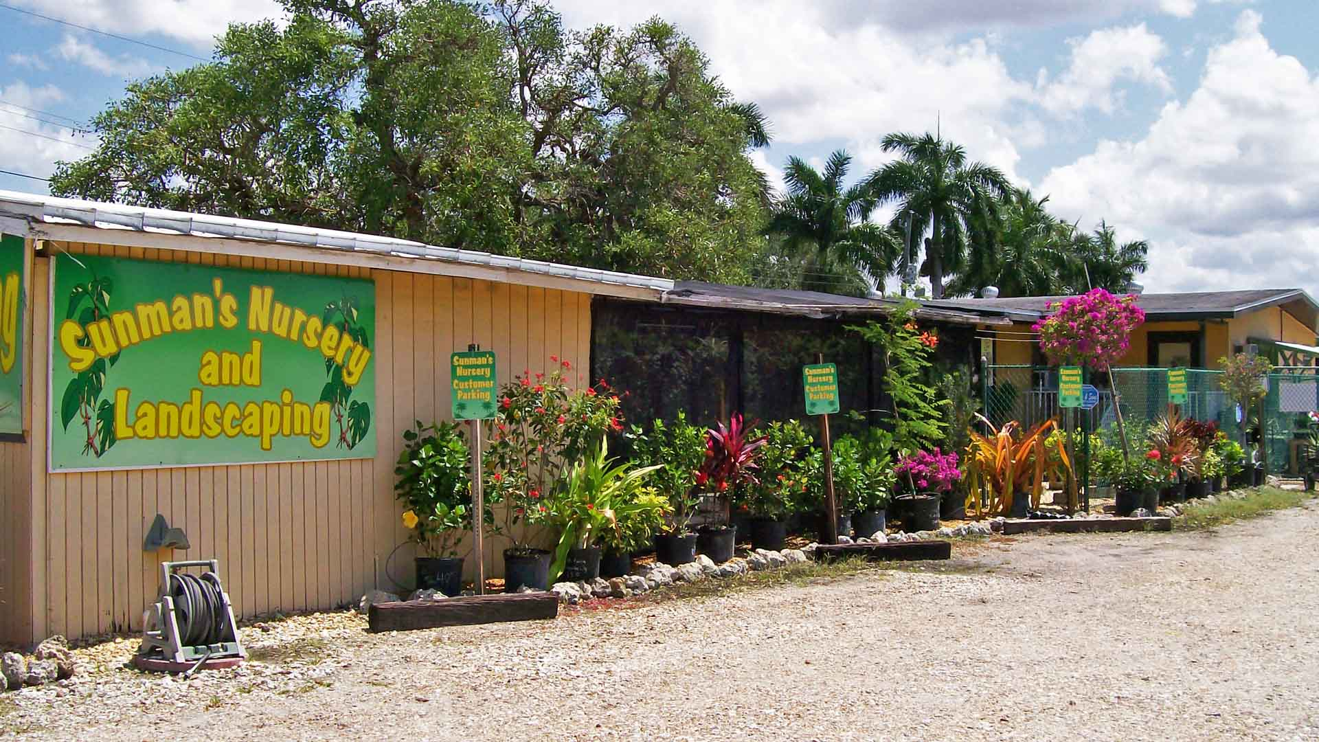 Background photo of Sunman's Nursery in Fort Myers, FL.