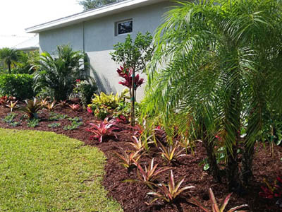 Ft. Myers home with new landscaping installation.