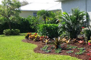 Landscaping design and installation at Fort Myers home by Sunman's Nusery.