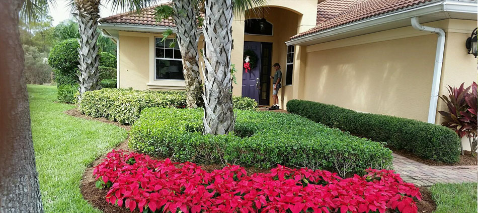 Home with professional maintained landscaping with annual flowers in Ft. Myers, FL