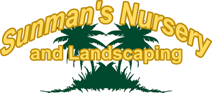 Fort Myers Plant Nursery Palm Trees Amp Fruit Trees